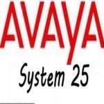 System 25